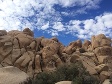 Joshua Tree Camping & Hot Springs Photo image_(3)2
