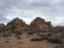 Joshua Tree Camping & Hot Springs Photo jt1