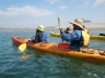 Faculty Staff Mission Bay Kayak Photo 8136